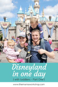 Disneyland in One Day Part 1
